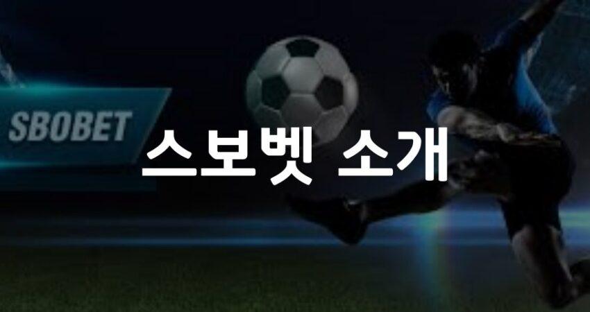 스보벳 소개